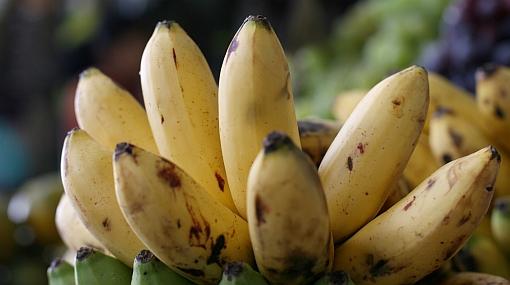 El plátano: El verdadero alimento universal