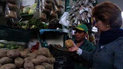Estudio demuestra la importancia de las amas de casa en la economía peruana