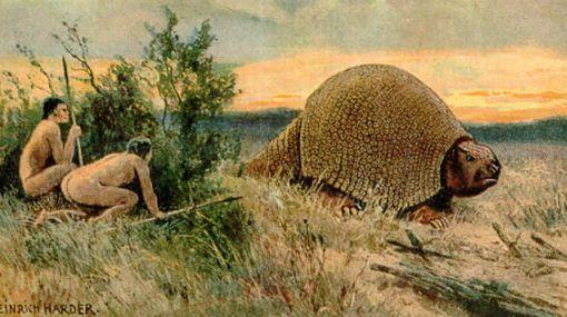 Un niño halló fósil de gliptodonte de 30.000 años de antigüedad en Uruguay