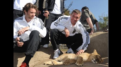 """Selección alemana visitó reserva de leones para contagiarse de """"garra"""""""