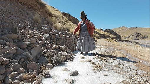 Ola de frío en Puno: los reclamos del Gobierno regional