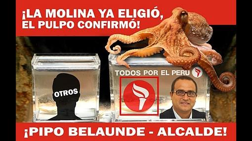 """El pulpo Paul """"participa"""" en la carrera por el municipio de La Molina"""
