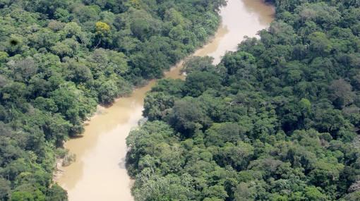 Ecuador protegerá su Amazonía de la explotación petrolera