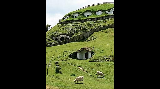 Miles de ovejas se apropiaron de las casas de los hobbits