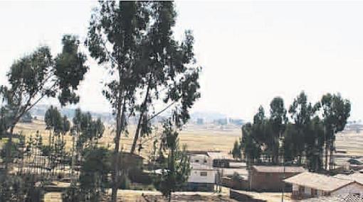Aeropuerto de Chinchero no tiene estudios de factibilidad