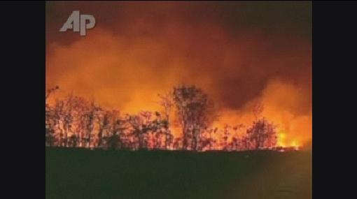 Arde Brasil: 15 estados fueron declarados en emergencia por incendios forestales