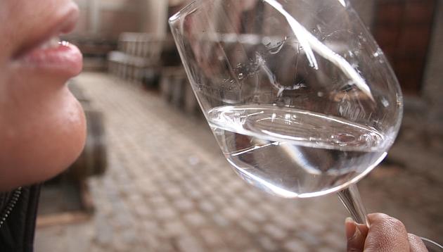 Recorrido en Chincha: degustación de vinos y pisco