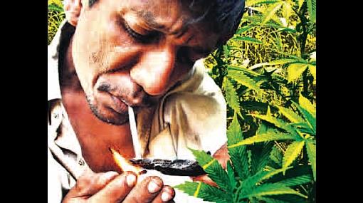 Debate sobre legalizar la droga: pros y contras de polémica propuesta