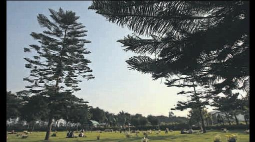 Parques cementerios siguen creciendo y ya equivalen a la mitad de Barranco