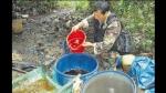 Narcos del Huallaga utilizan nuevo químico para producir drogas - Noticias de cayumba grande