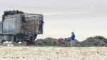 Produce incautó 20.000 kilos de algas en Arequipa y Tacna - Noticias de resolución ministerial