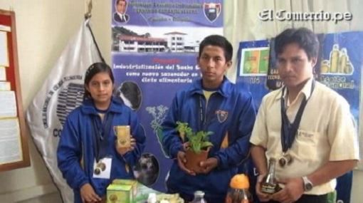 Conozca los trabajos ganadores en la Feria Escolar de Ciencia, Tecnología e Innovación