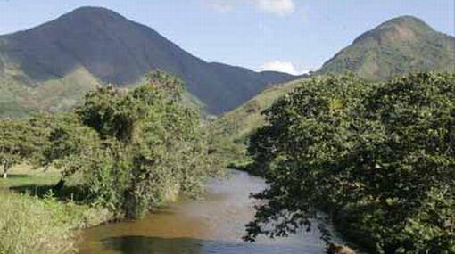 El Perú es el segundo país sudamericano con mayor superficie boscosa