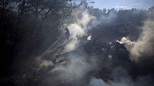 El peor incendio de la historia de Israel fue controlado en cuatro días