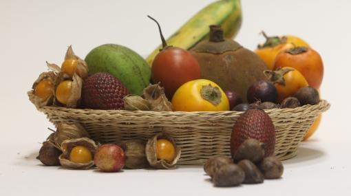 Frutas, verduras y cereales: alimentos que limpian el cuerpo