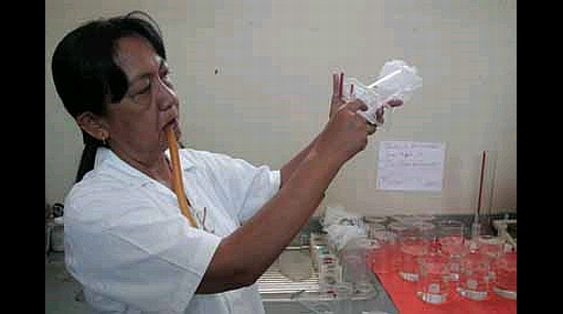 Dengue obliga a Paraguay a declarar emergencia sanitaria