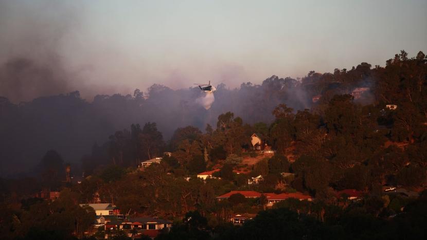 FOTOS: lo que dejaron los incendios en el oeste de Australia