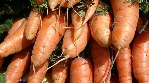 Los beneficios de comer zanahoria más allá de darnos una buena visión