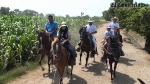 Aventura cercana: a caballo por el valle de Lurín - Noticias de chavez peralta