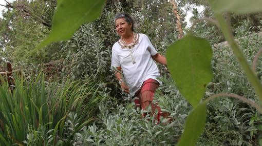 Guardianas de la tierra: mujeres que saben defender la naturaleza