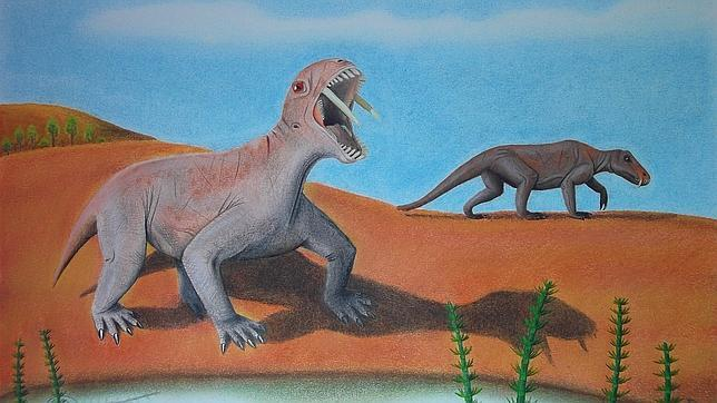Un herbívoro prehistórico dientes de sable fue hallado en Brasil