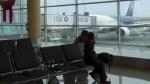 Indecopi ha multado a cuatro líneas aéreas por cobros para cambiar vuelos - Noticias de código de protección y defensa del consumidor