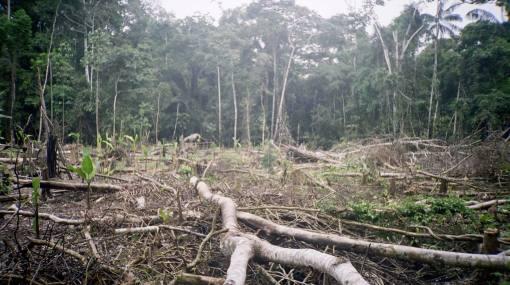 Partidos suscribieron pacto ambiental en defensa de nuestros recursos