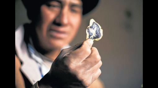 Chips de papas nativas son premiadas en Europa