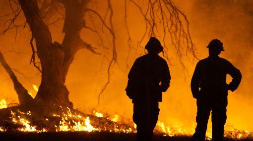 Incendios forestales pueden acelerar calentamiento global, según la FAO