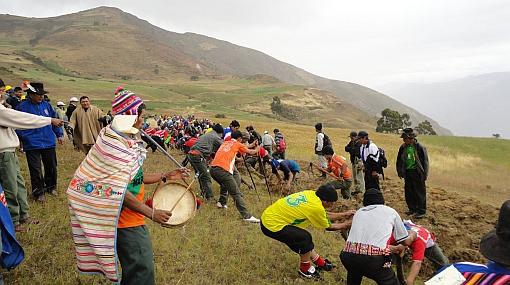 La papa poccya obtuvo el primer puesto en festival de Churcampa en Huancavelica