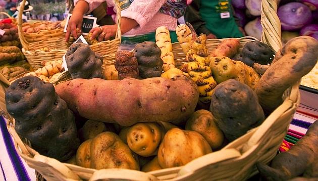 Las papas nativas ganan presencia en los supermercados