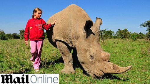 Amor gigante: una niña luce como mascota a un rinoceronte