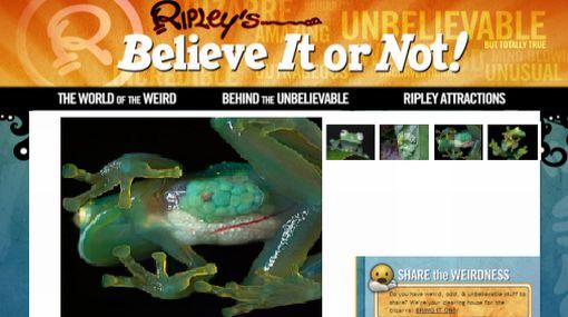 'Ranas de vidrio': increíbles anfibios cuyos órganos están a la vista