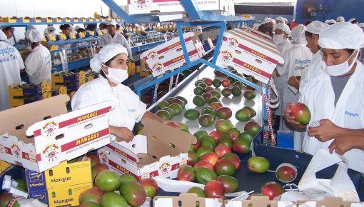 Perú liderará crecimiento en Sudamérica este año y el 2012, según el FMI