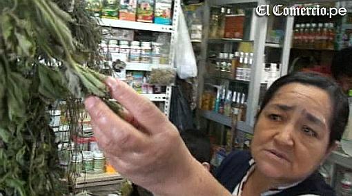 Conoce las bondades de las hierbas medicinales del norte del Perú