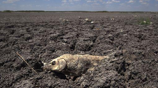 Climas extremos generaron pérdidas de $32.000 millones en EE.UU. en 2011