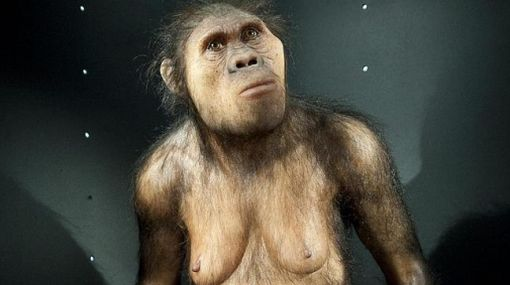 Humanos modernos tuvieron sexo con homínidos primitivos