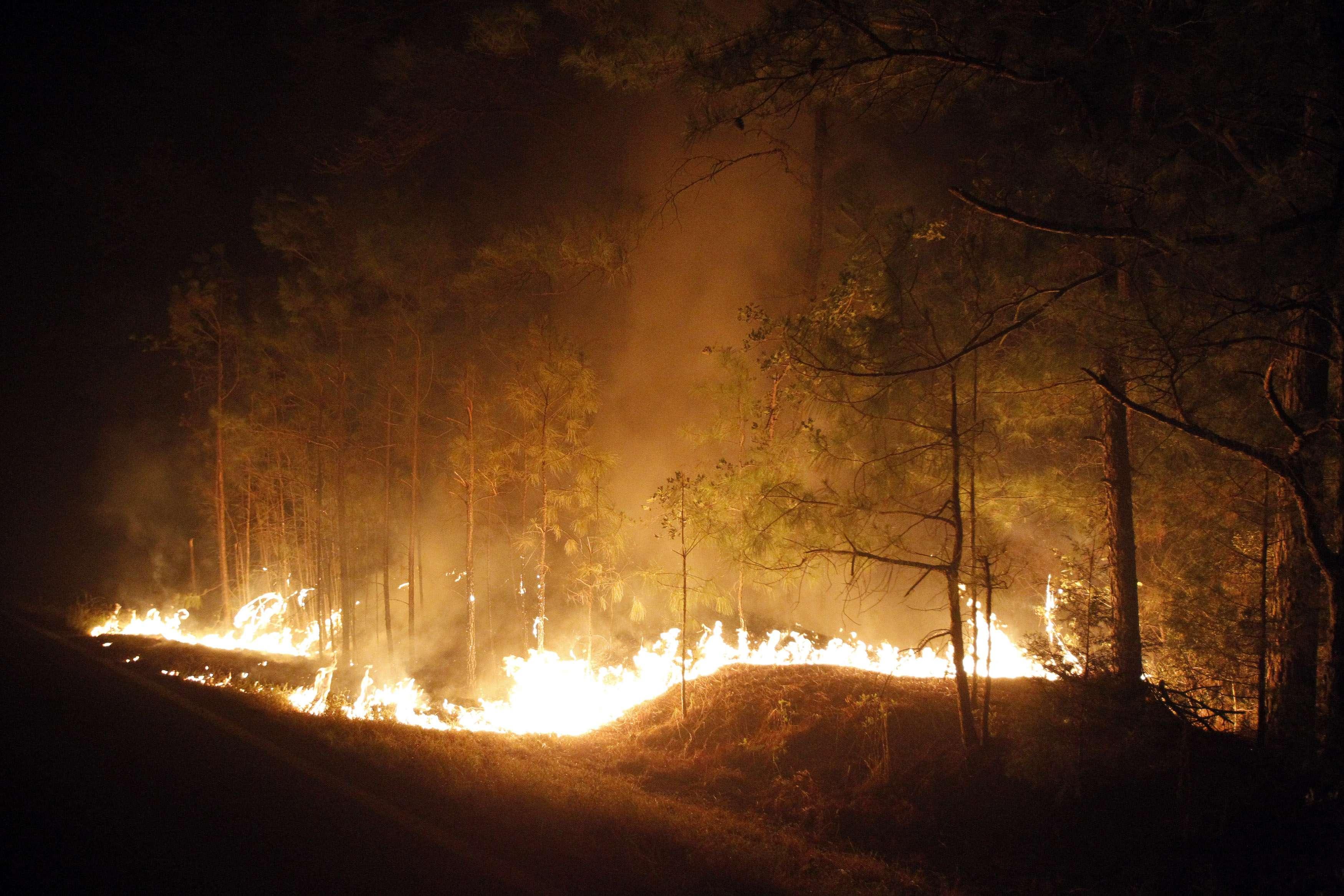 FOTOS: la destrucción que ocasiónó el incendio más grande de Texas