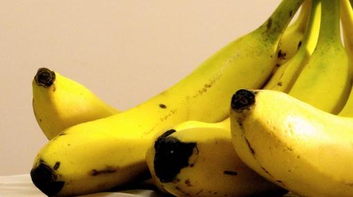 Una fruta de sabios: conoce la historia del plátano
