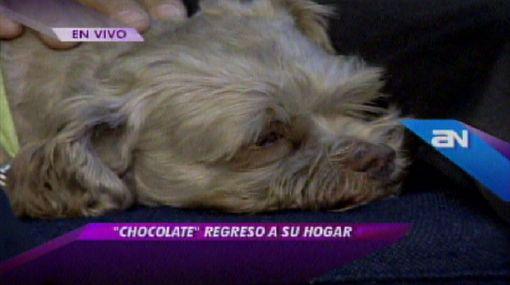 Mujer encontró a 'Chocolate' y se ganó entradas al Perú-Paraguay