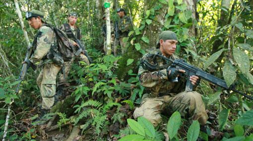 Loreto: la policía allanó 19 pozas para la elaboración de drogas