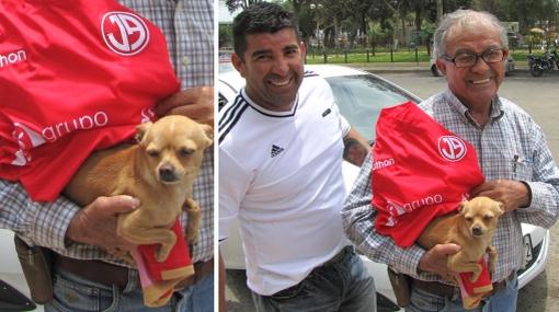 Final estilo 'Chocolate': encontraron al perrito 'Toffee' en Chiclayo