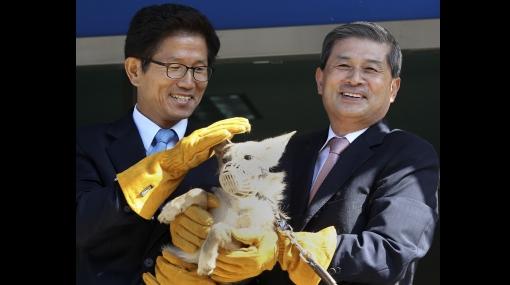 Polémico investigador surcoreano asegura haber clonado ocho coyotes