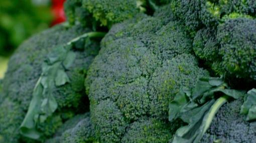 Crean 'superbrócoli' que ayuda a prevenir enfermedades cardiovasculares