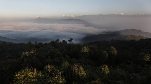 El cambio climático amenaza la biodiversidad del Himalaya