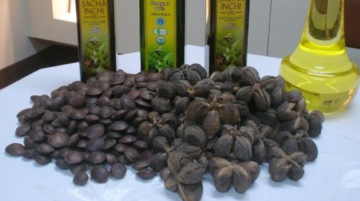 ¿Sabes qué es el aceite de Sacha Inchi y para qué sirve?