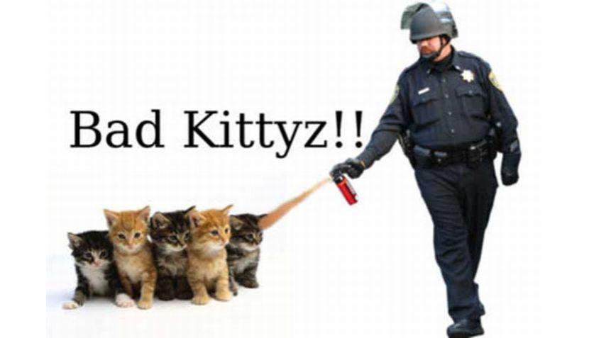 #Occupy en la red: internautas se burlan de policía que arrojó gas pimienta
