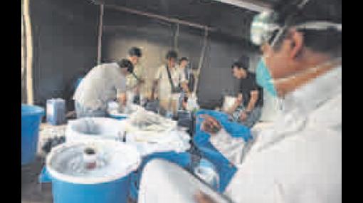 Organización internacional procesaba droga en fundo agrícola de Chilca