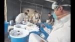 Organización internacional procesaba droga en fundo agrícola de Chilca - Noticias de jose paredes padilla