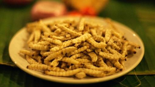Cinco razones por las que debemos comer insectos, según la ONU